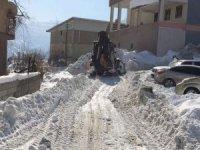 Hakkari'de zorlu kar mesaisi devam ediyor