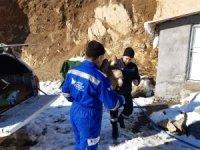 Yaralı Kızıl Akbaba tedavi altına alındı