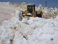 Yüksekova'da mayıs ayında karla mücadele