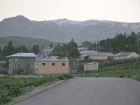 Van'da 2 ev karantinaya alındı