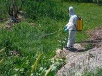 Hakkari'de Larva ilaçlama çalışmaları sürüyor