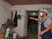 Hakkari'de bir evde 10 yılan bulundu