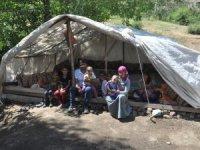 11 kişilik ailenin çadırda yaşam mücadelesi