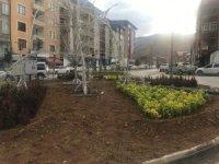 Hakkari belediyesi süsleme çalışması başlattı