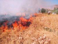 Kayalar köyü yangına böyle müdahale etti