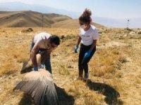 Sağlığına kavuşan Akbaba doğaya salındı