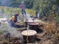 Doğal üzüm pekmezinin yapılmasına başlandı