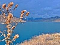Dilimli Barajı'nda sonbahar güzelliği büyülüyor