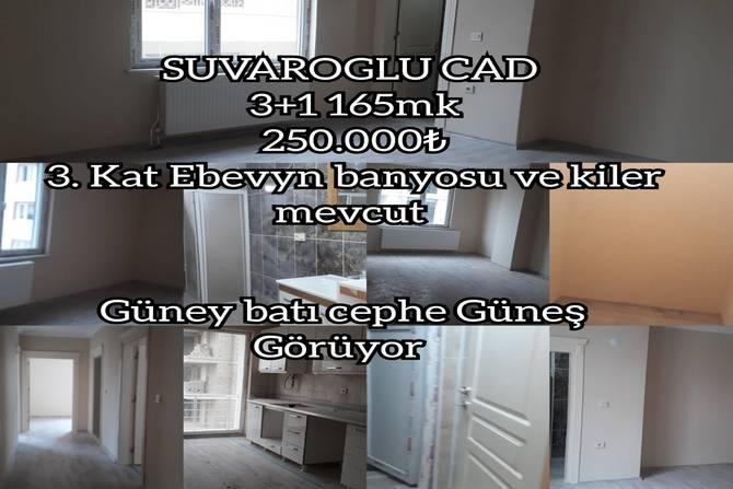 05e89641-679f-47dd-b131-50f04355a10a.jpg