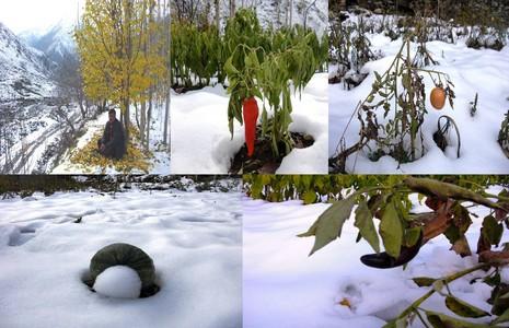 esat-kilic-1.20121212144957.jpg