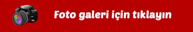 galeri1.png