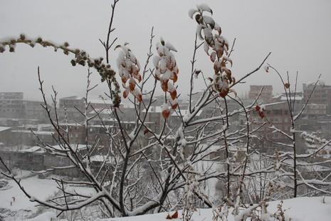 kar-yagisi-3.20131205112835.jpg