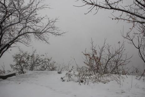 kar-yeni-2.jpg