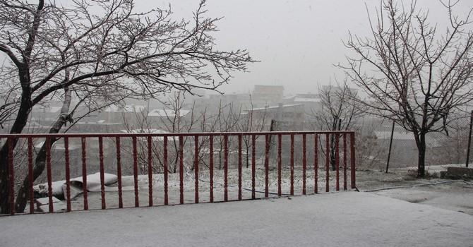 mart-kar-2.jpg
