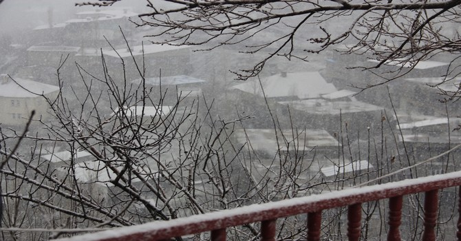 mart-kar-3.jpg